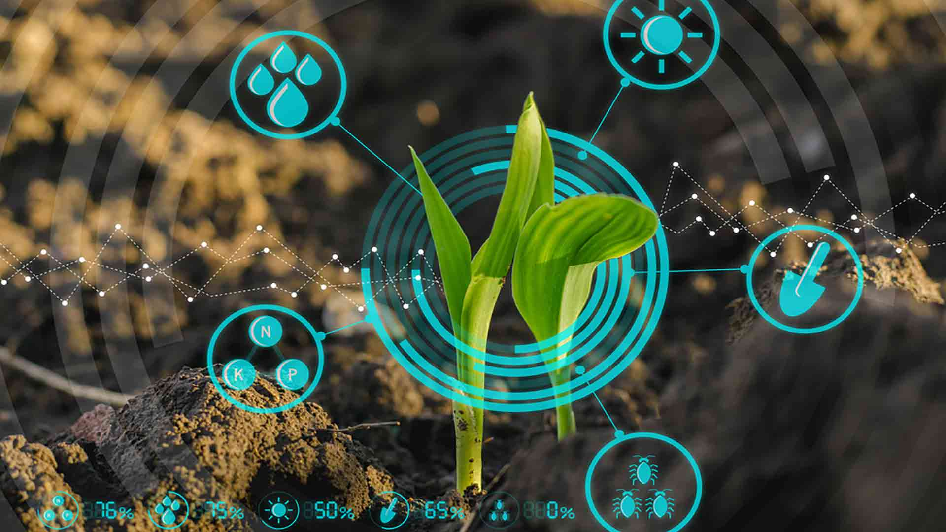 Digital-Technology-in-Agriculture